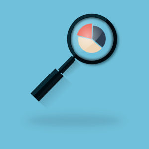 Analyzing a Pie Chart with a Magnifying Glass